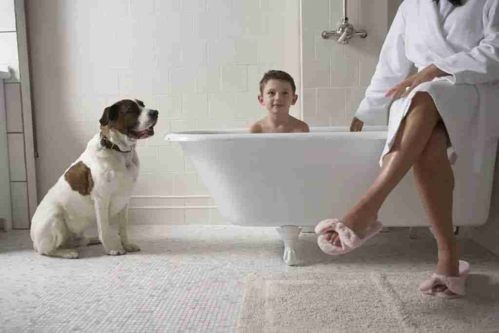 About us -SealTech Solutions - Shower Repair Company