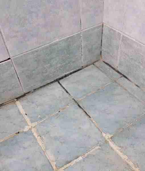 leaking shower base